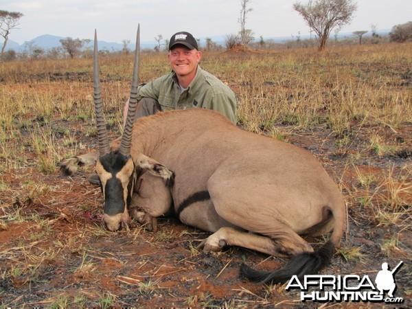 Fringed Ear Oryx