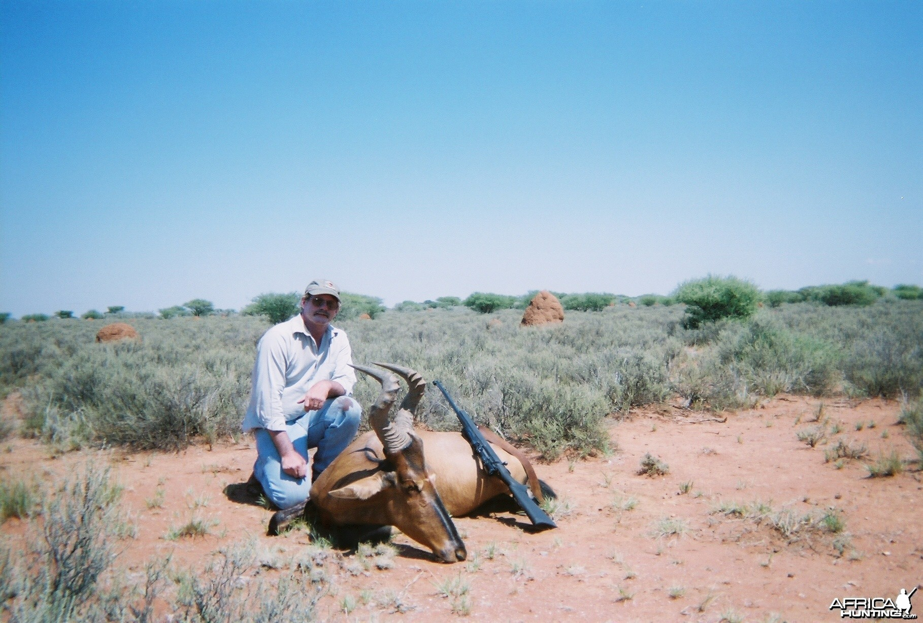 RED  HARTEBEEST  2007    N.W. PROVINCE