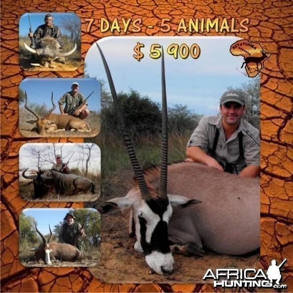 7 Days - 5 Animals