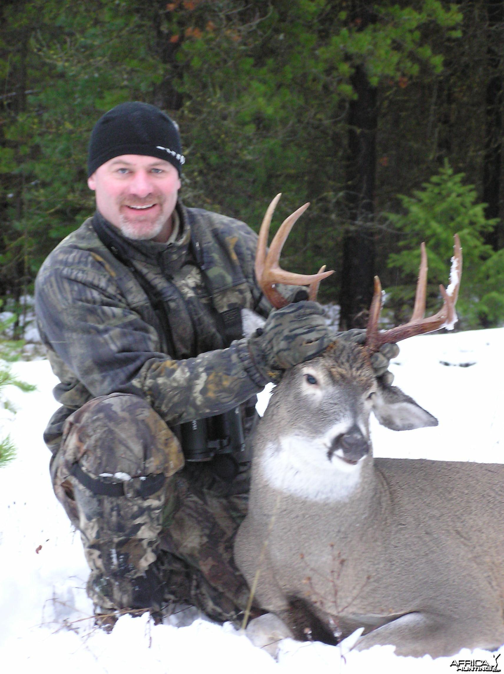 Montana Whitetail