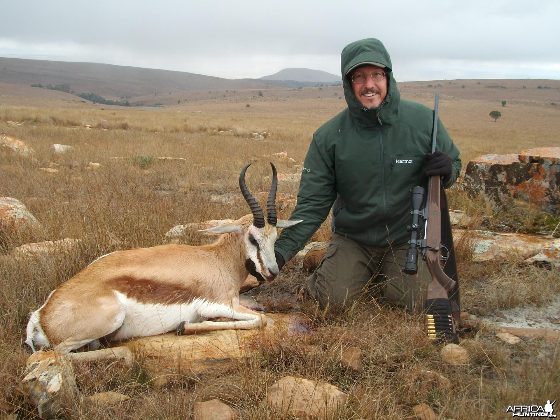Springbok hunted in Limpopo SA