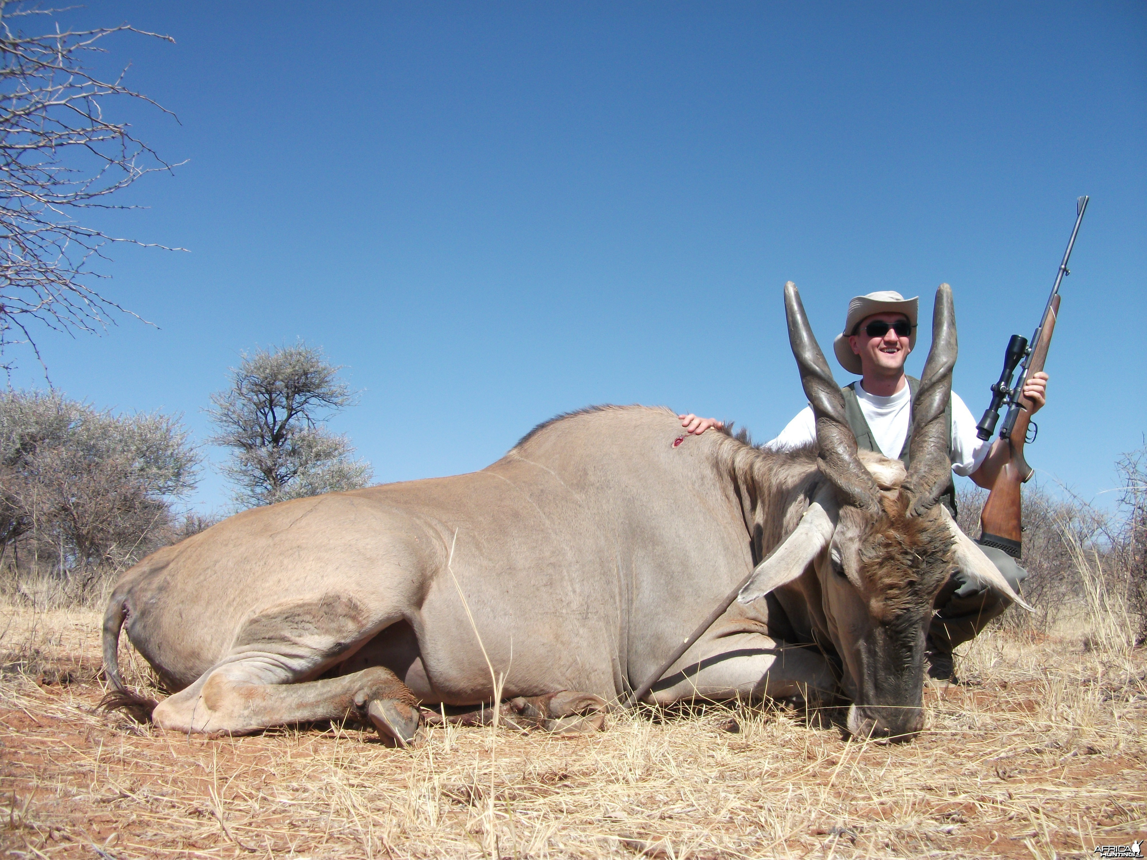 Cape Eland Hunting in Namibia