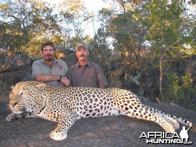Great Leopard 2011