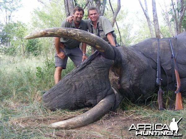 2011 elephant hunt Zimbabwe