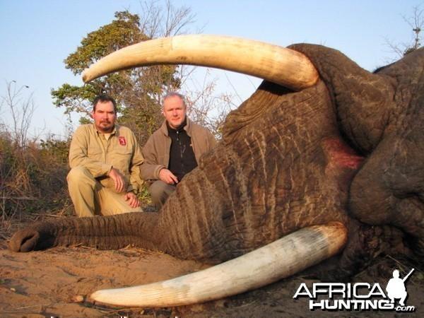 LATEST ELEPHANT TAKEN 5TH JULY 2011