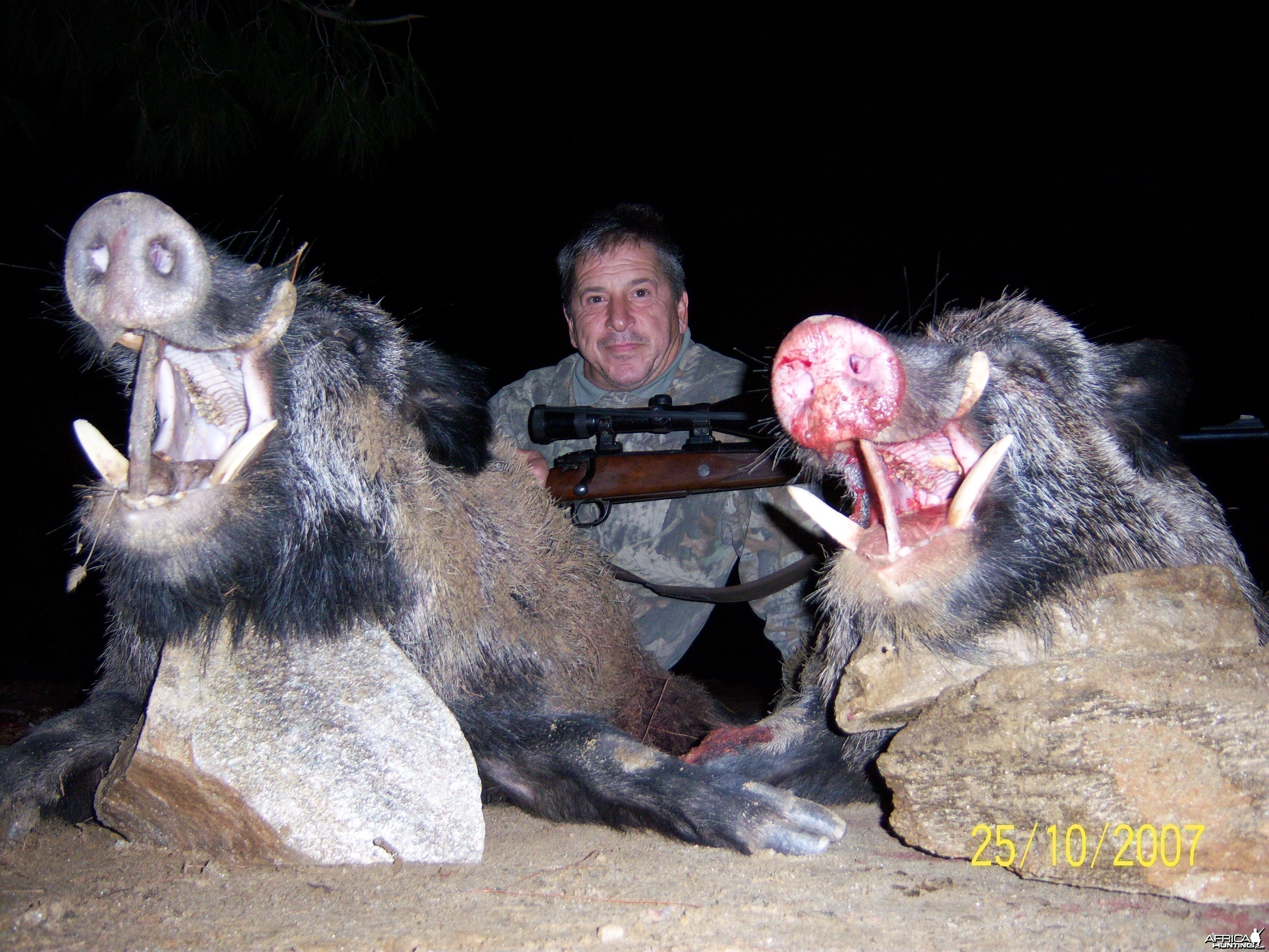 BOARS TURKEY 2007