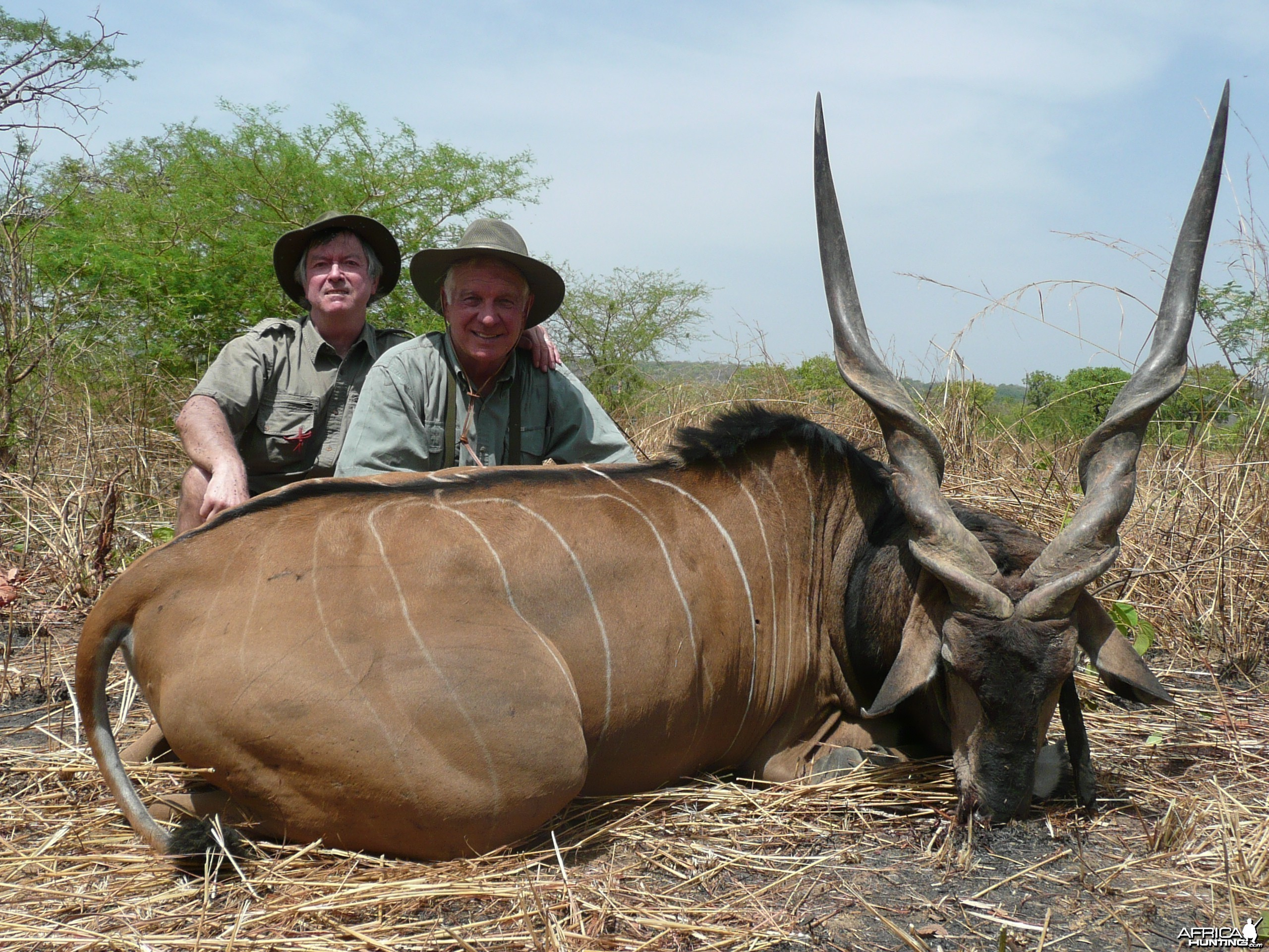 52 inch Lord Derby eland hunted in CAR with PH Rudy Lubin