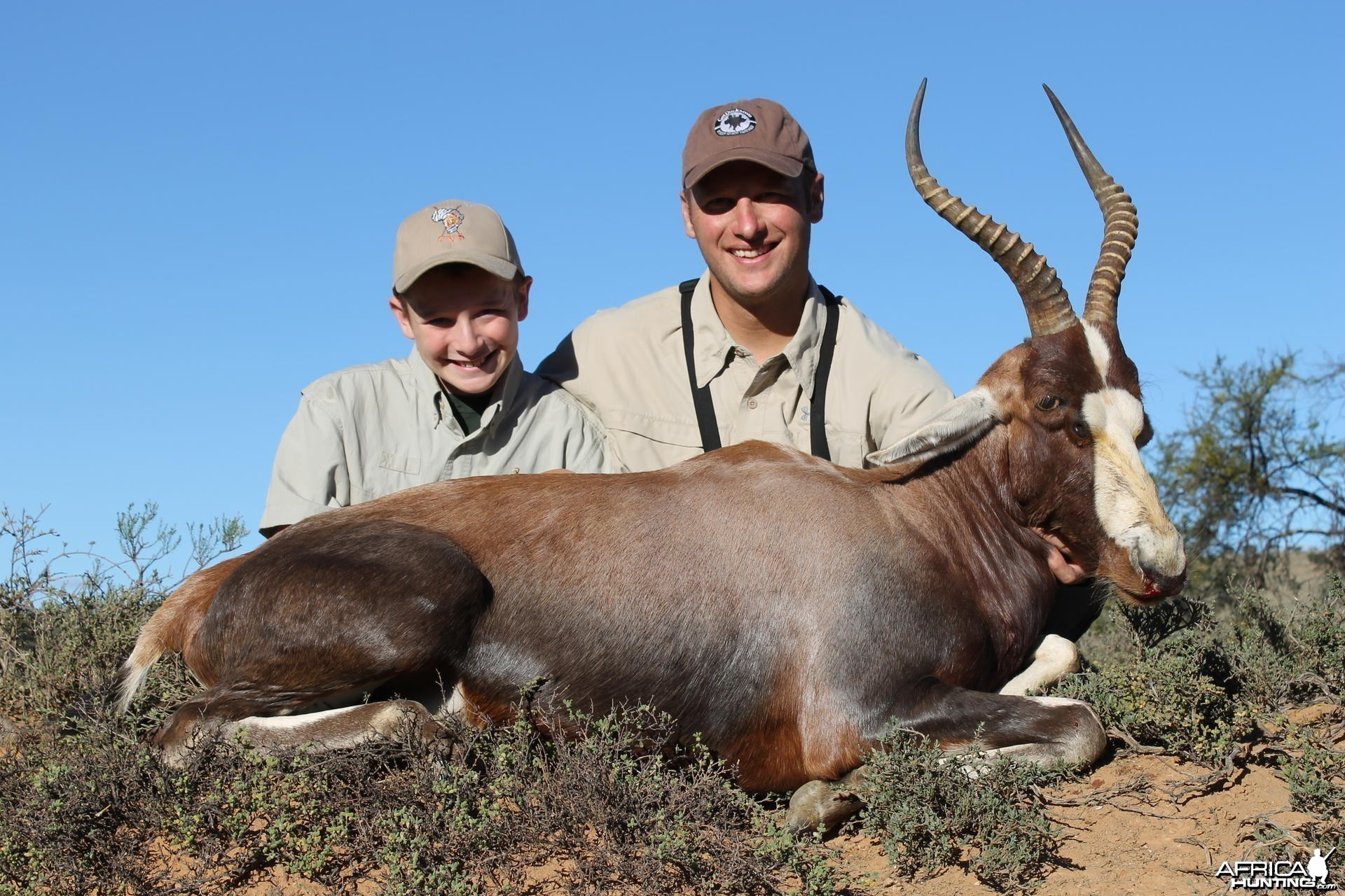 Blesbok taken with Cape Valley Safaris