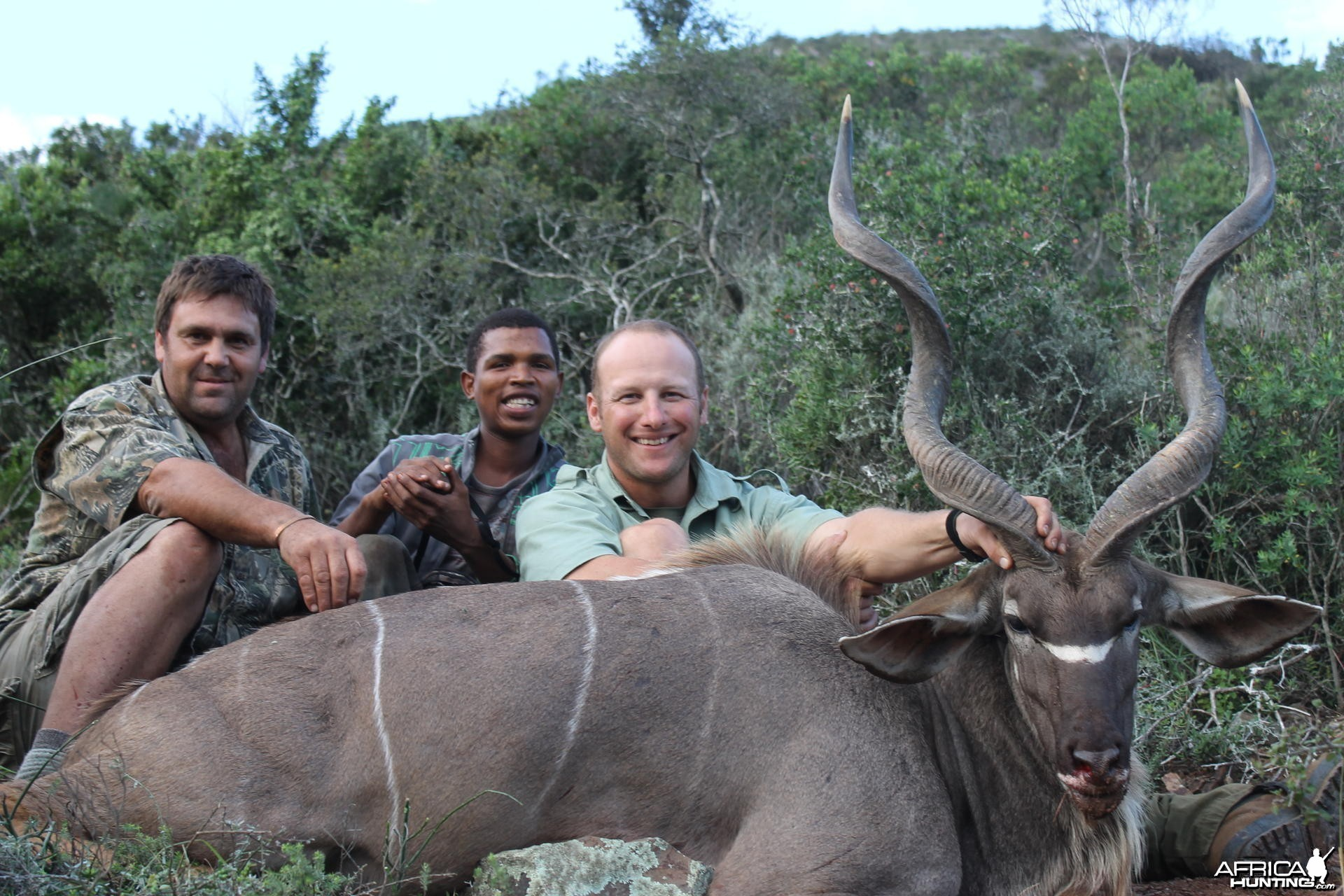 Kudu taken with Cape Valley Safaris