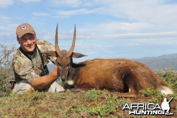 Bushbuck taken with Cape Valley Safaris