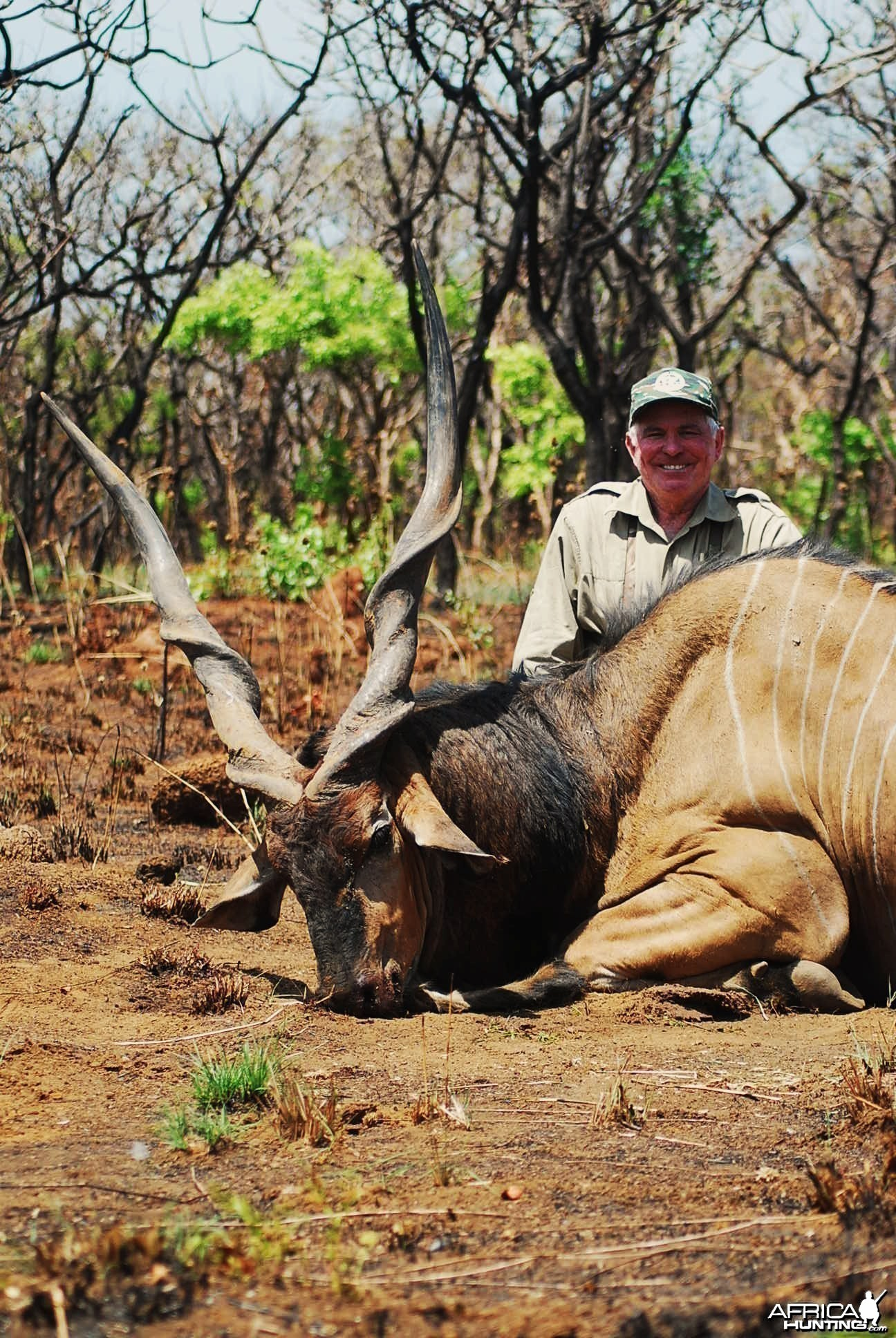 56 inch Eland hunted in CAR with Central African Wildlife Adventures