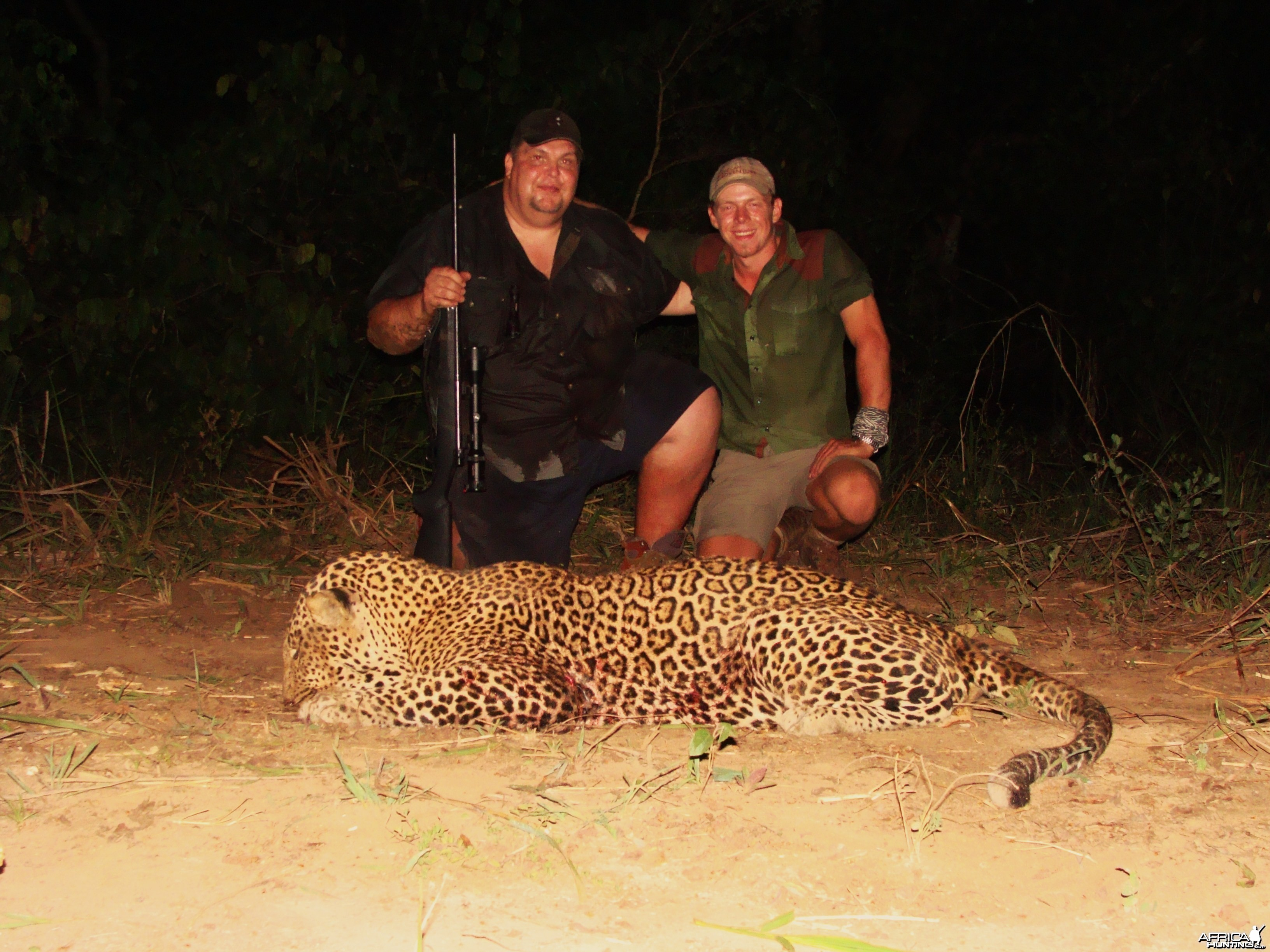 78 kg Leopard hunted in CAR with Central African Wildlife Adventures