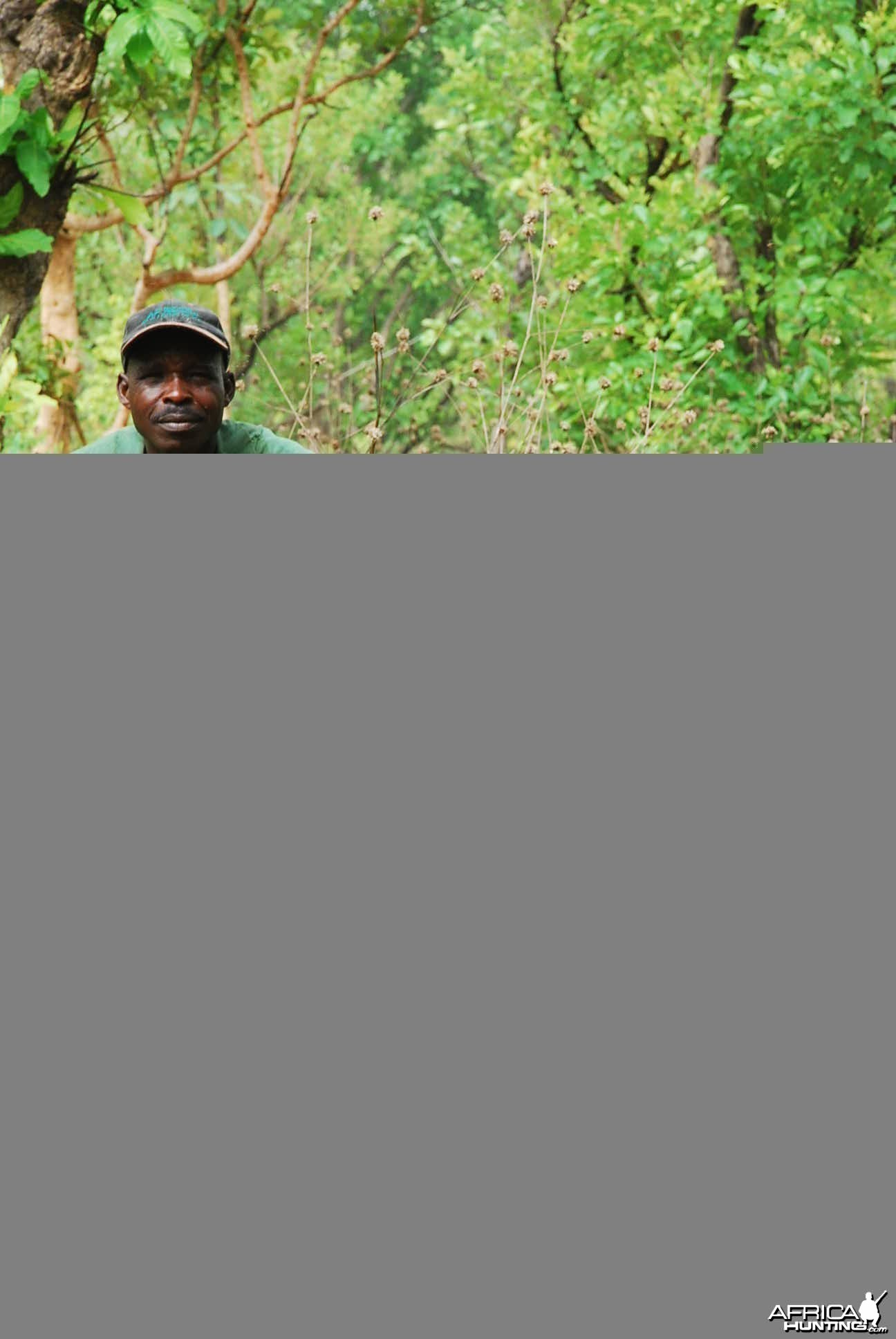 Broken horn Buffalo hunted in CAR with Central African Wildlife Adventures