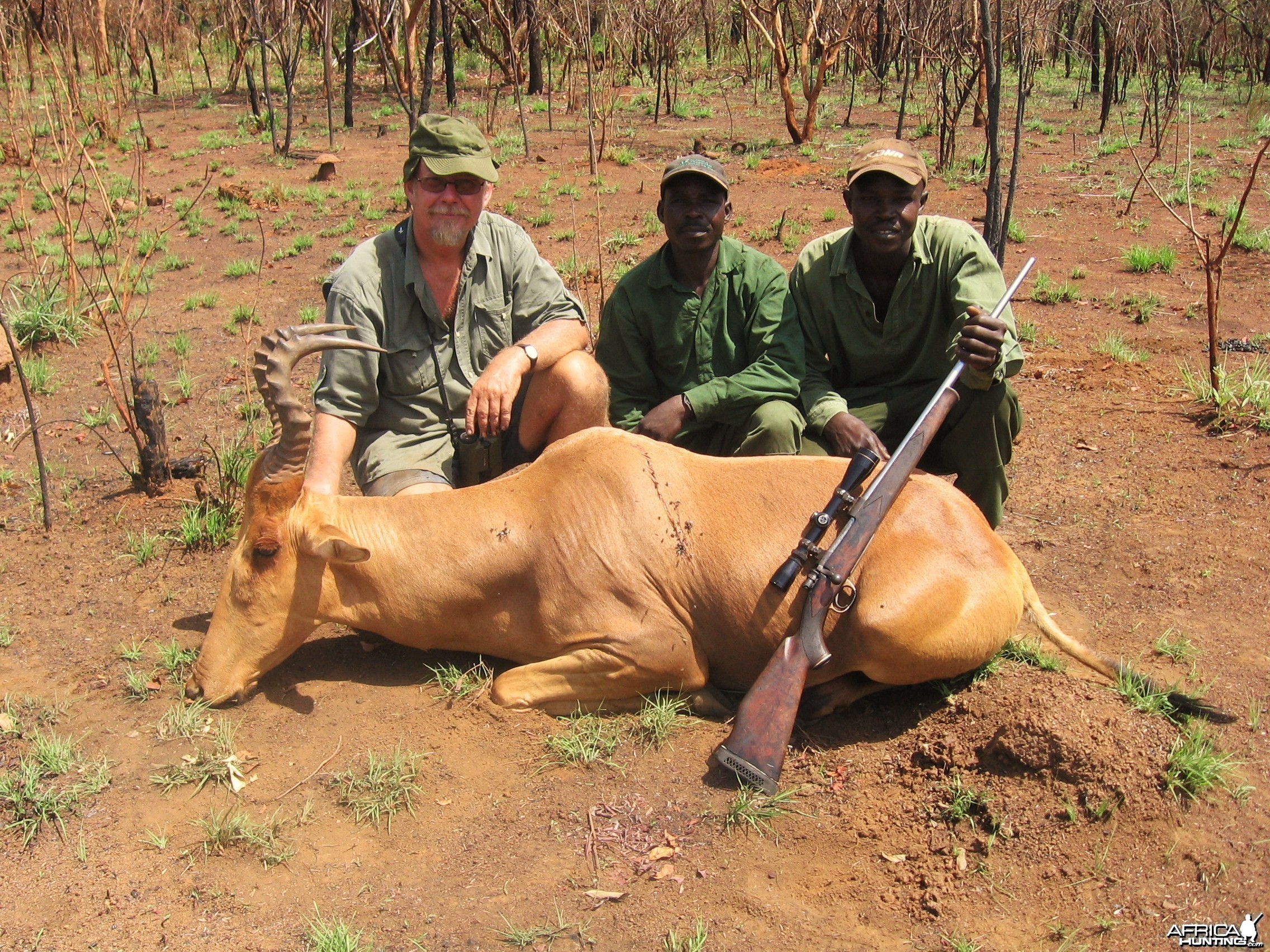 Hartebeest hunted in CAR with Central African Wildlife Adventures
