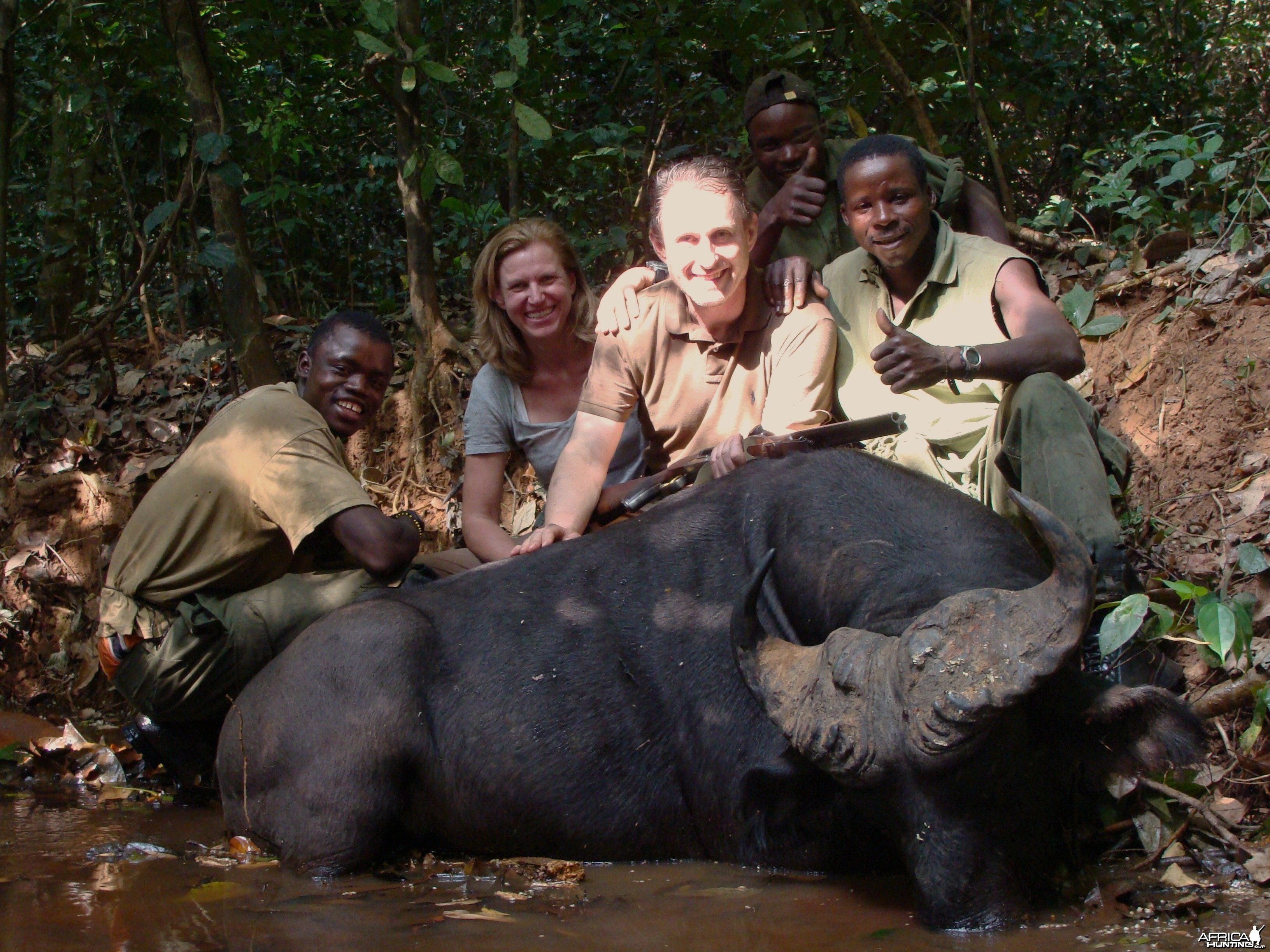 Heavy bossed Buffalo hunted in CAR with Central African Wildlife Adventures