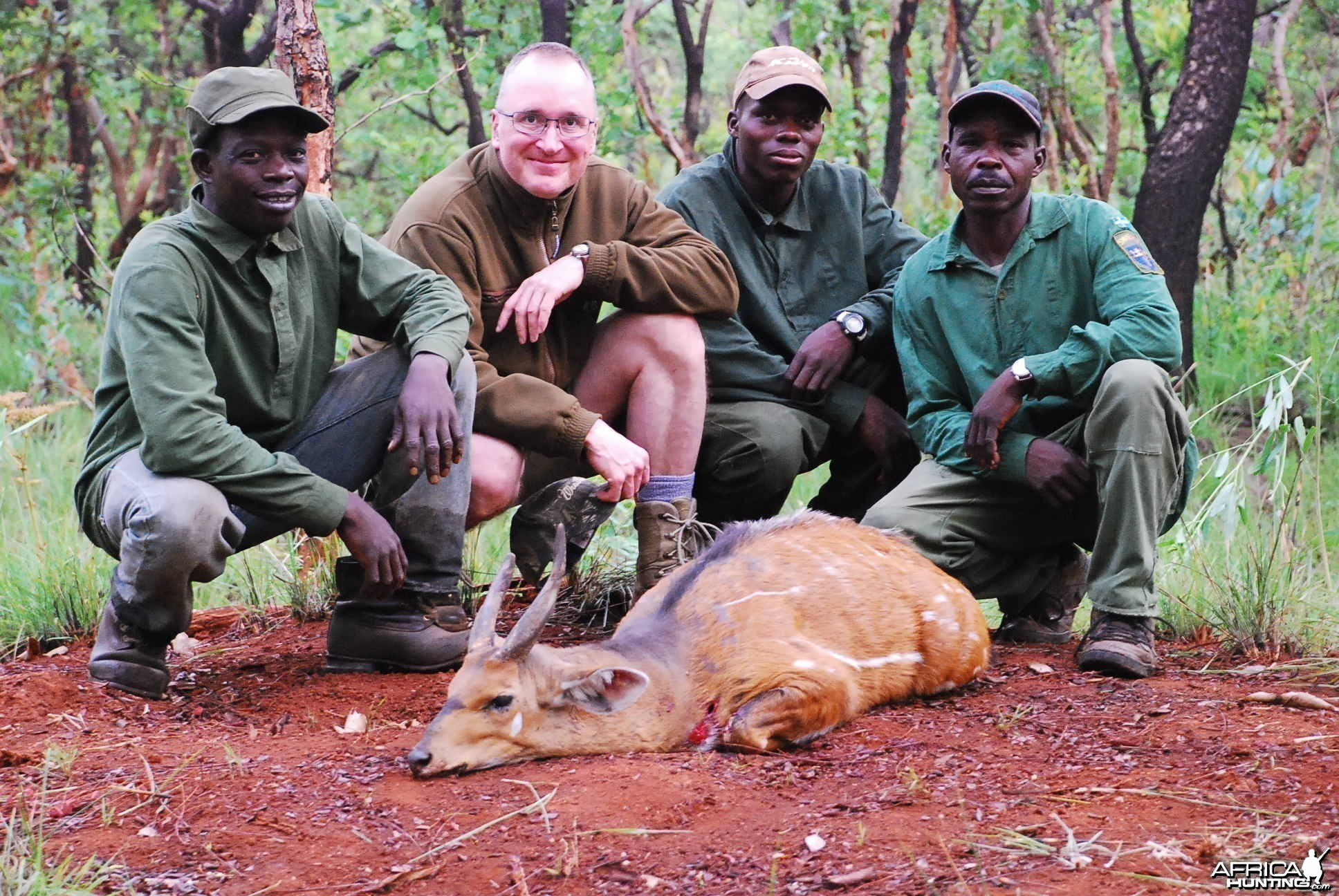 Old Bushbuck hunted in CAR with Central African Wildlife Adventures