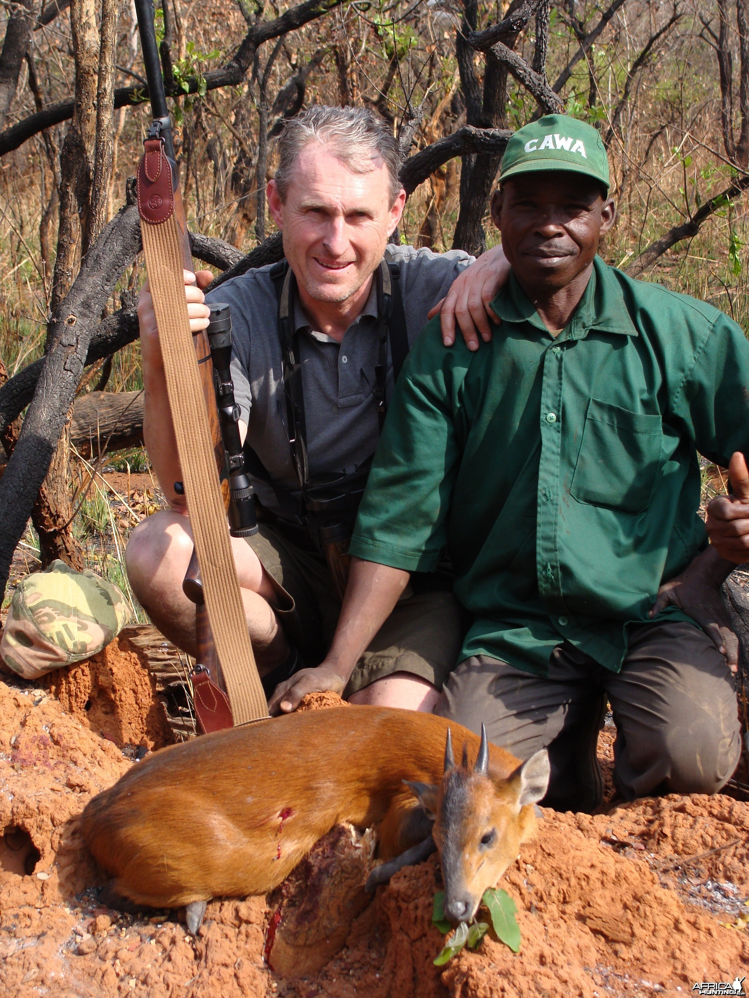 Red Flanked Duiker hunted in CAR with Central African Wildlife Adventures