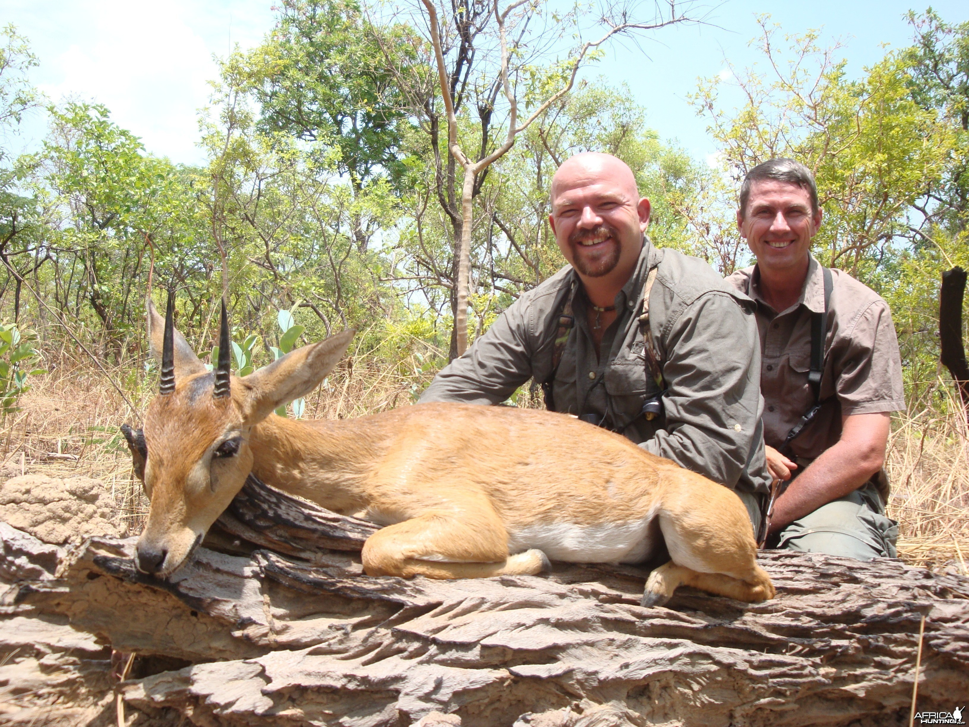 Oribi hunted in CAR with Central African Wildlife Adventures