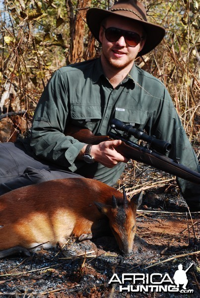 Red Flanked Duiker hunted in CAR with CAWA