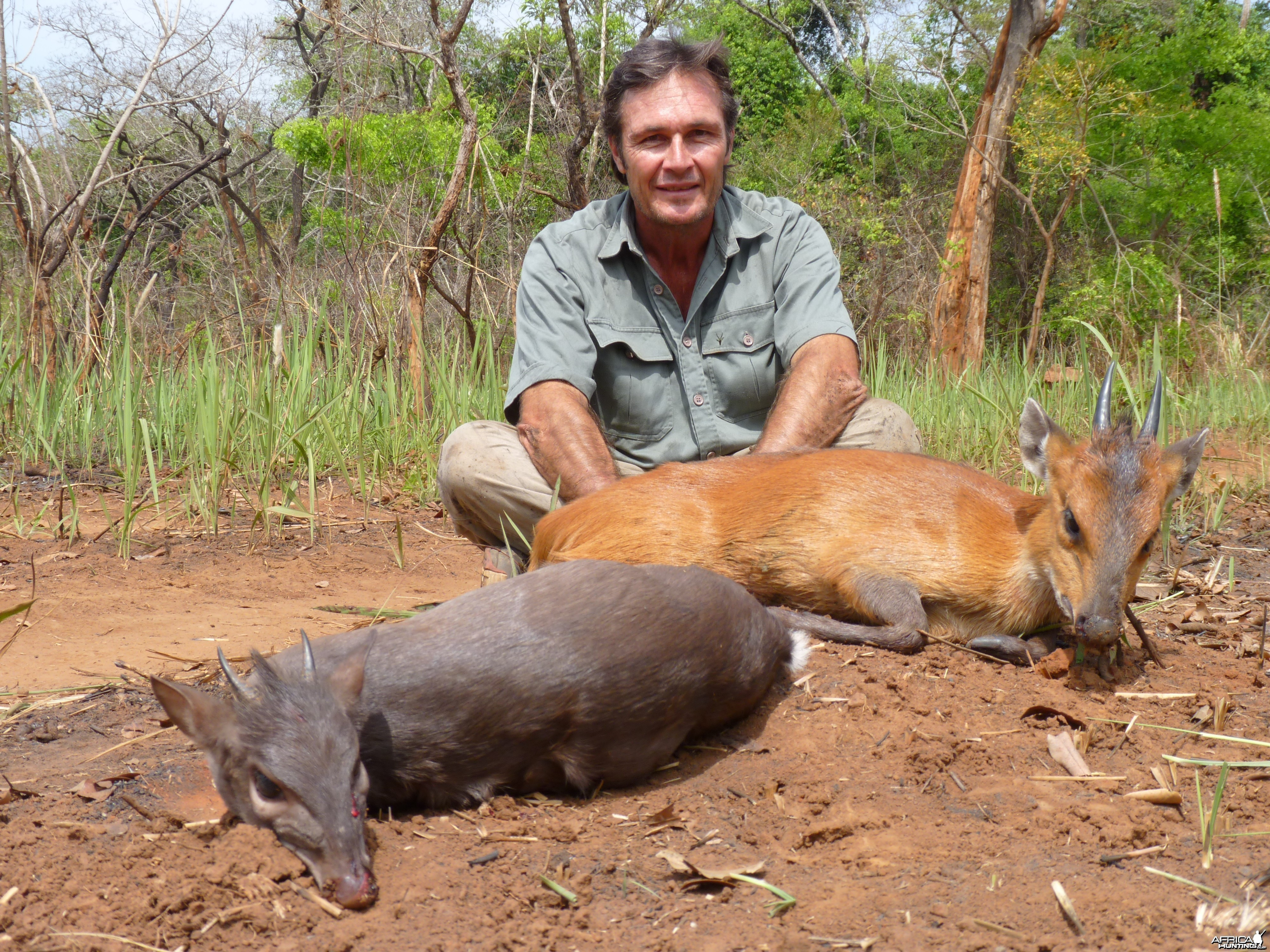 Red Flanked and Blue Duiker hunted in CAR with CAWA