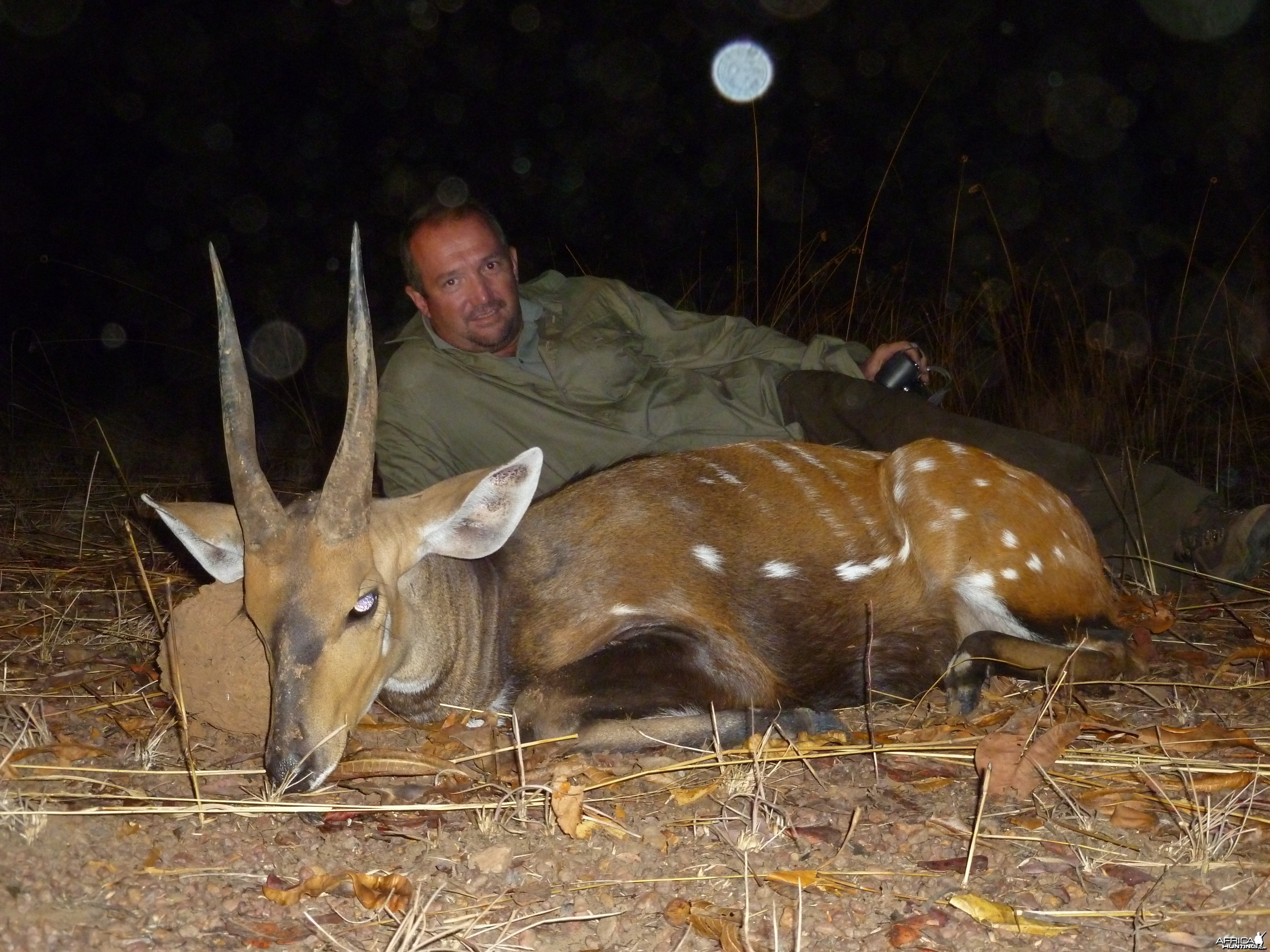Bushbuck hunted in CAR with CAWA