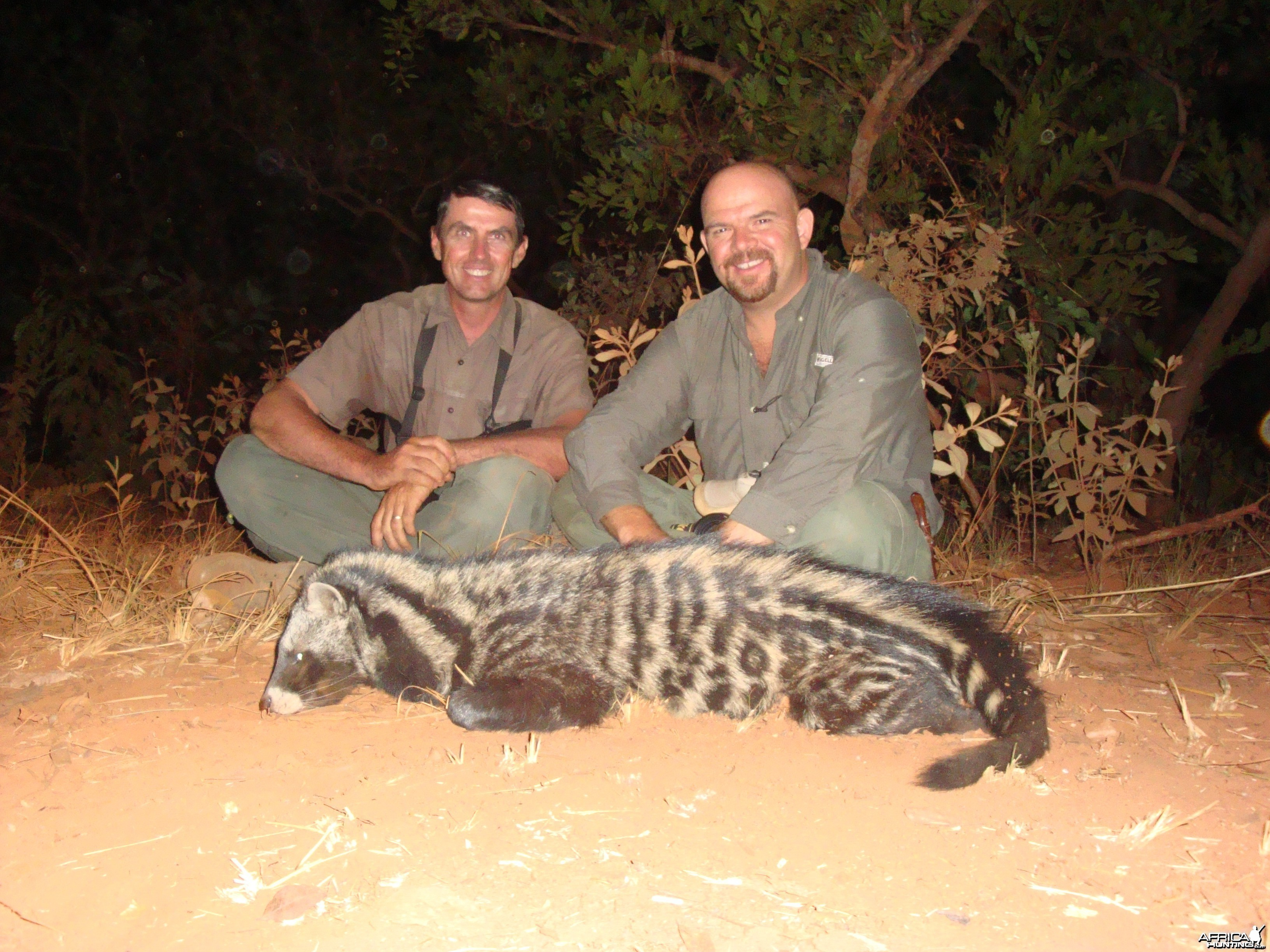Civet Cat hunted in Central African Republic with CAWA
