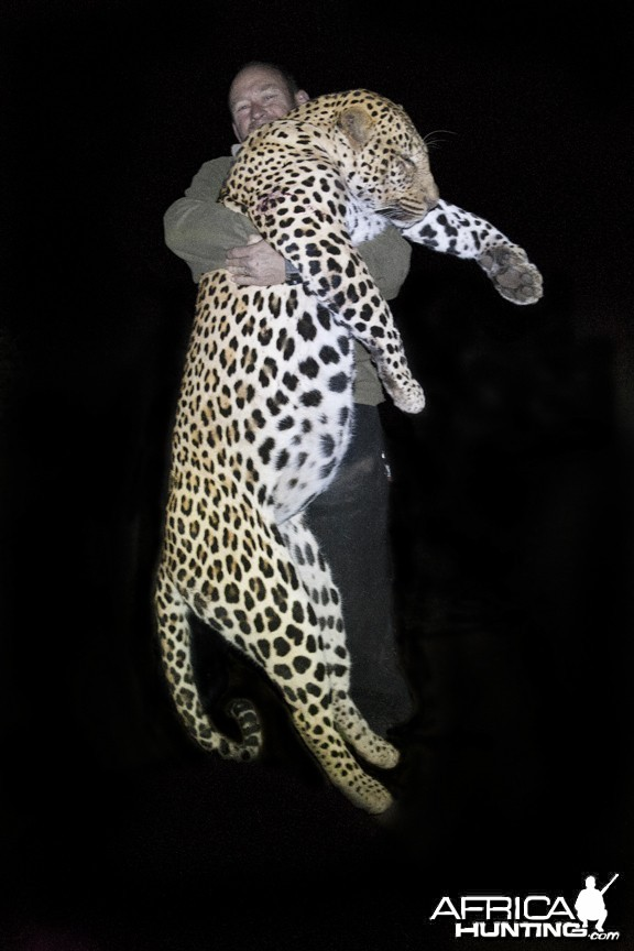 The Musomberi Monster Leopard, Zimbabwe