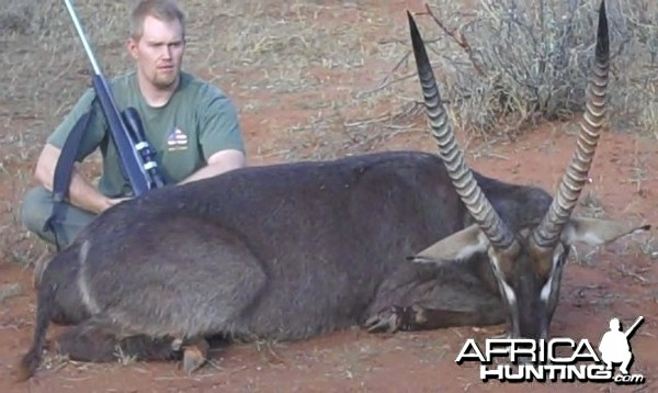 Waterbuck Limpopo South Africa