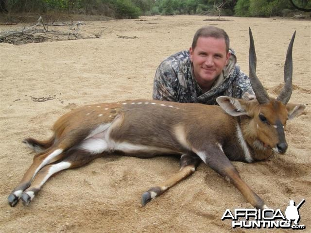 Bushbuck Hunt in Save Valley Conservancy Zimbabwe