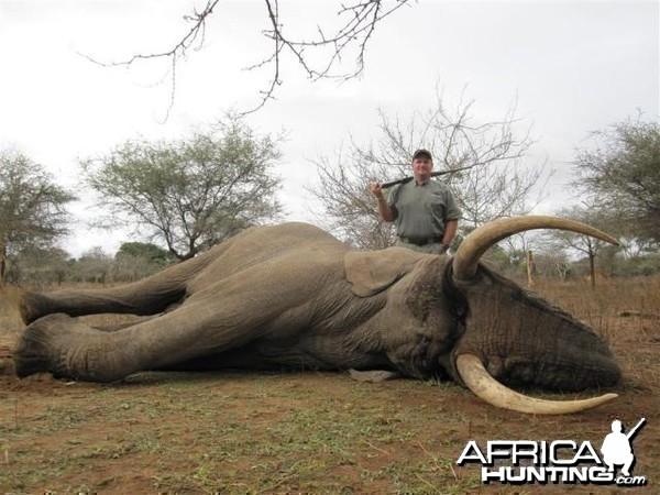 Elephant Hunt in Save Valley Conservancy Zimbabwe