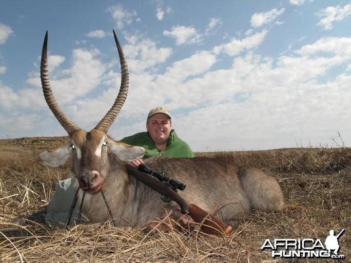 30.25 inch Waterbuck Bull