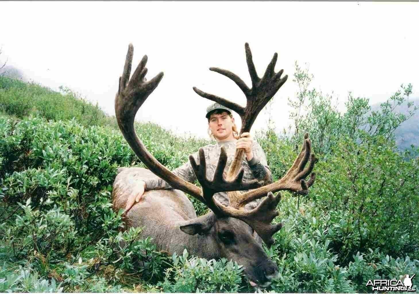 1996 Mt Caribou