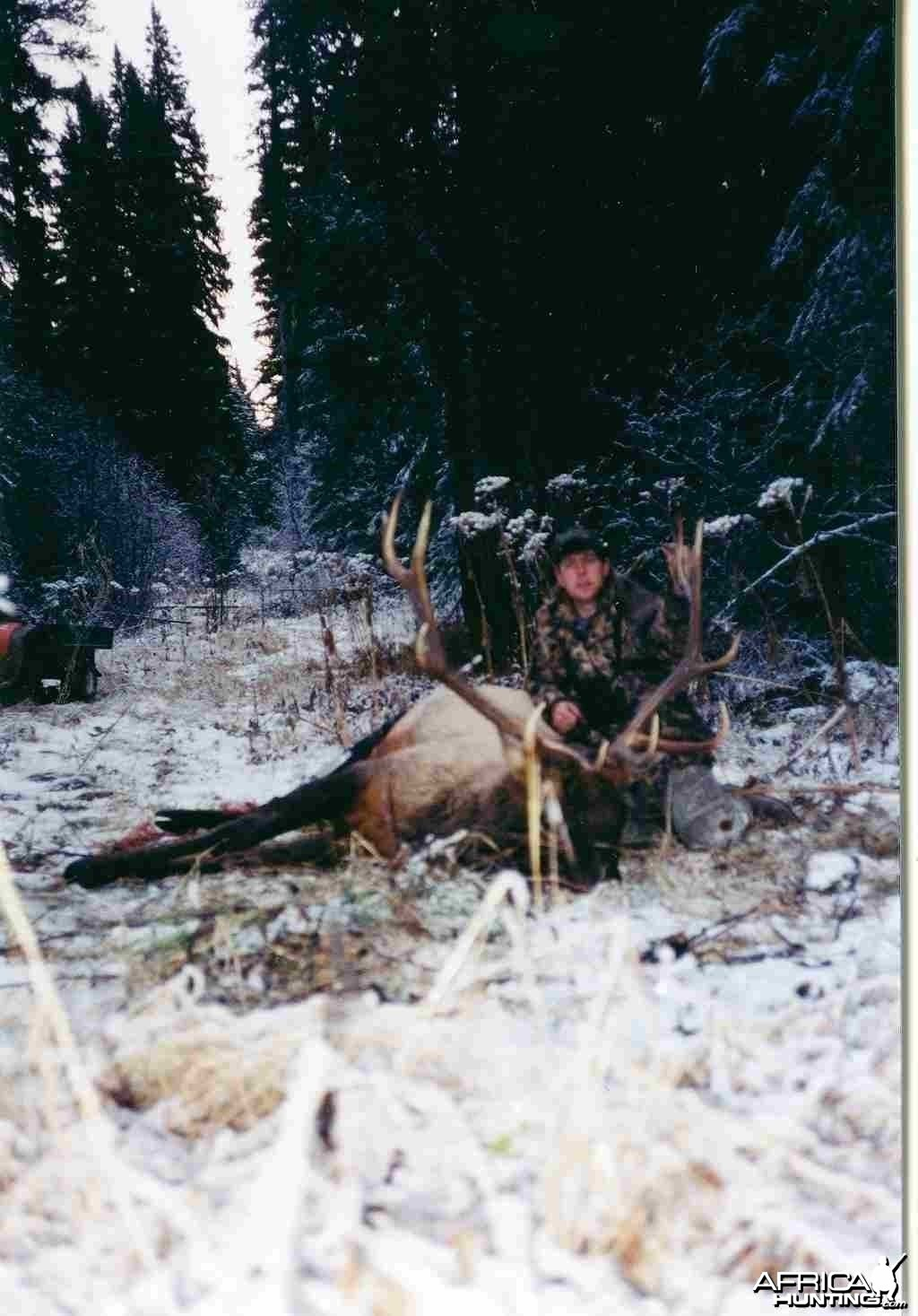 2000 Berland Elk