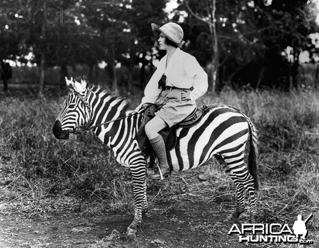 Osa Johnson riding Zebra