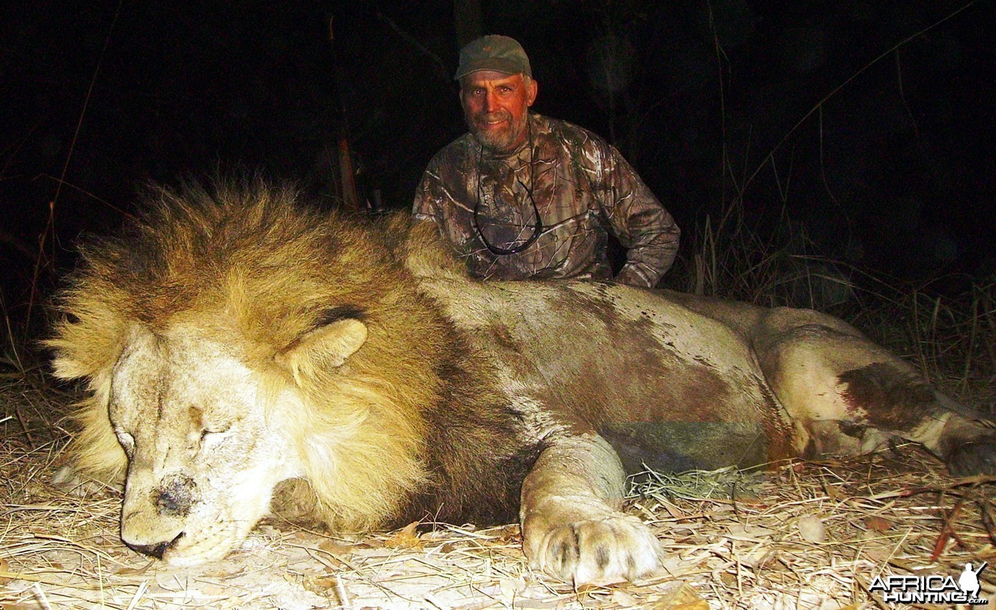 Big Lion hunted in Zambia with Prohunt Zambia