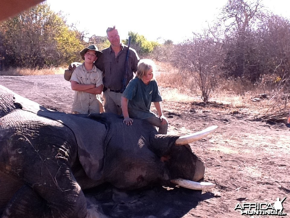 37 lbs Elephant hunted in Zimbabwe