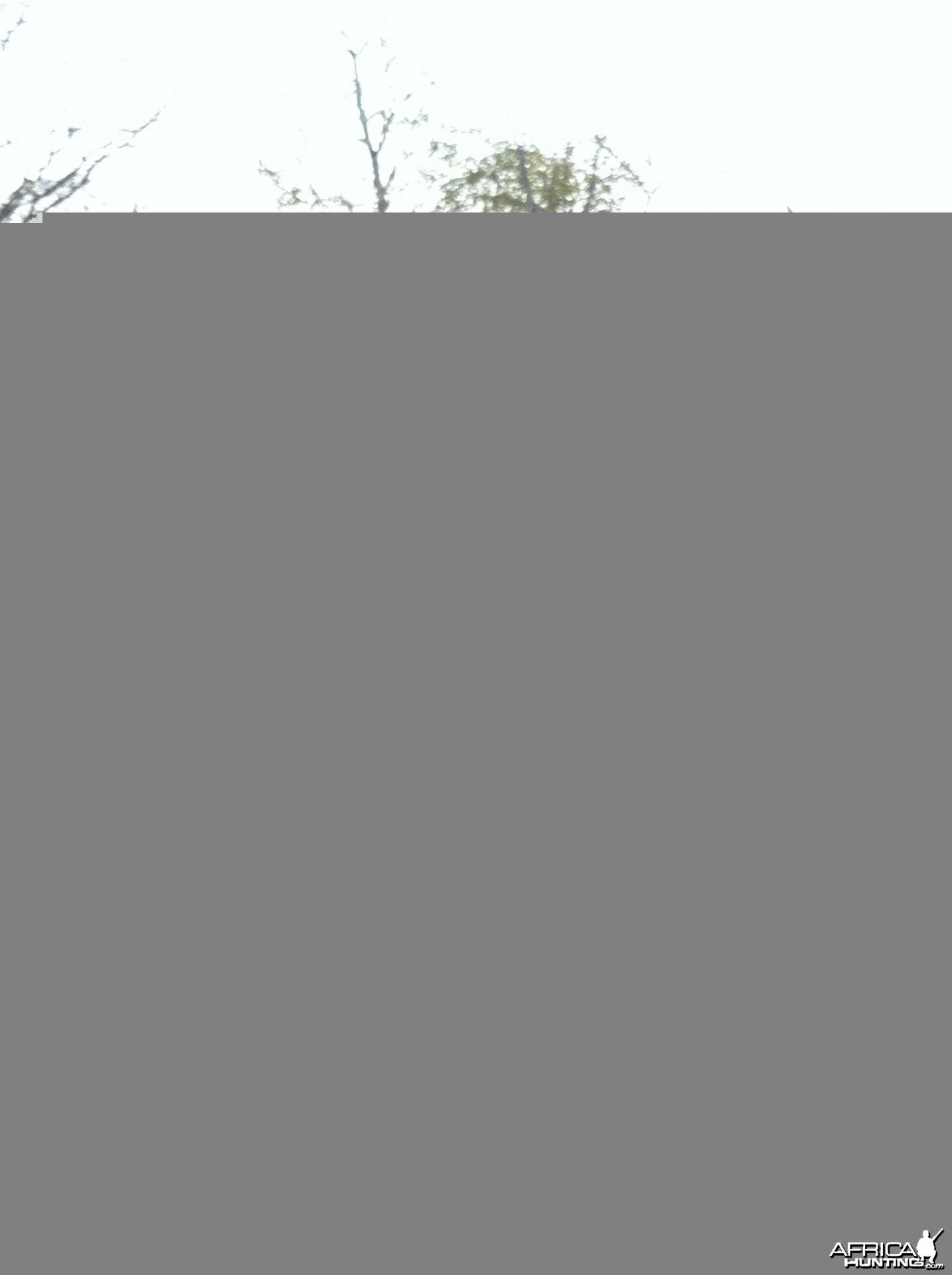 My daughter a nice Kudu hunted in Zimbabwe