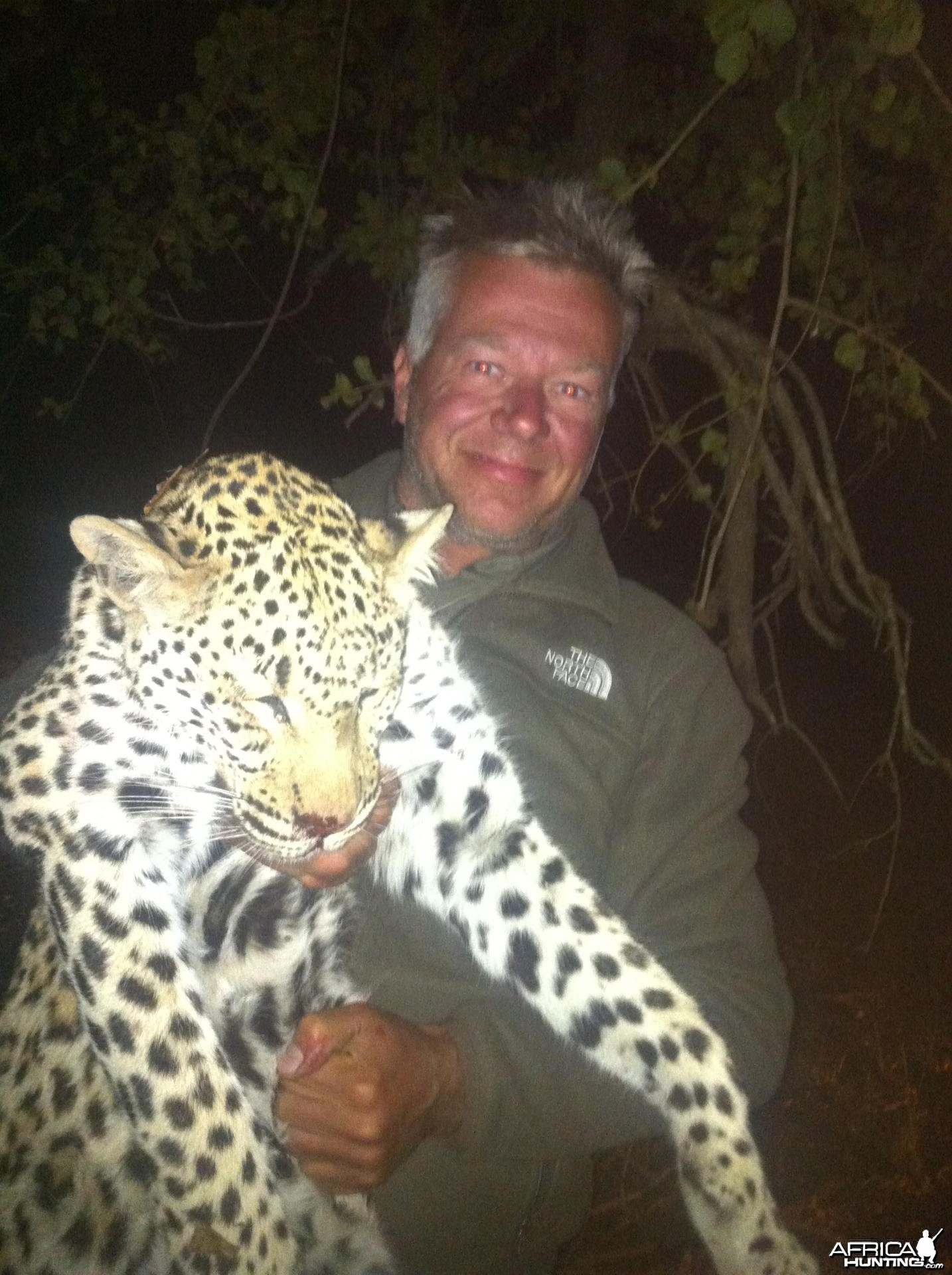 Leopard hunted in Zimbabwe