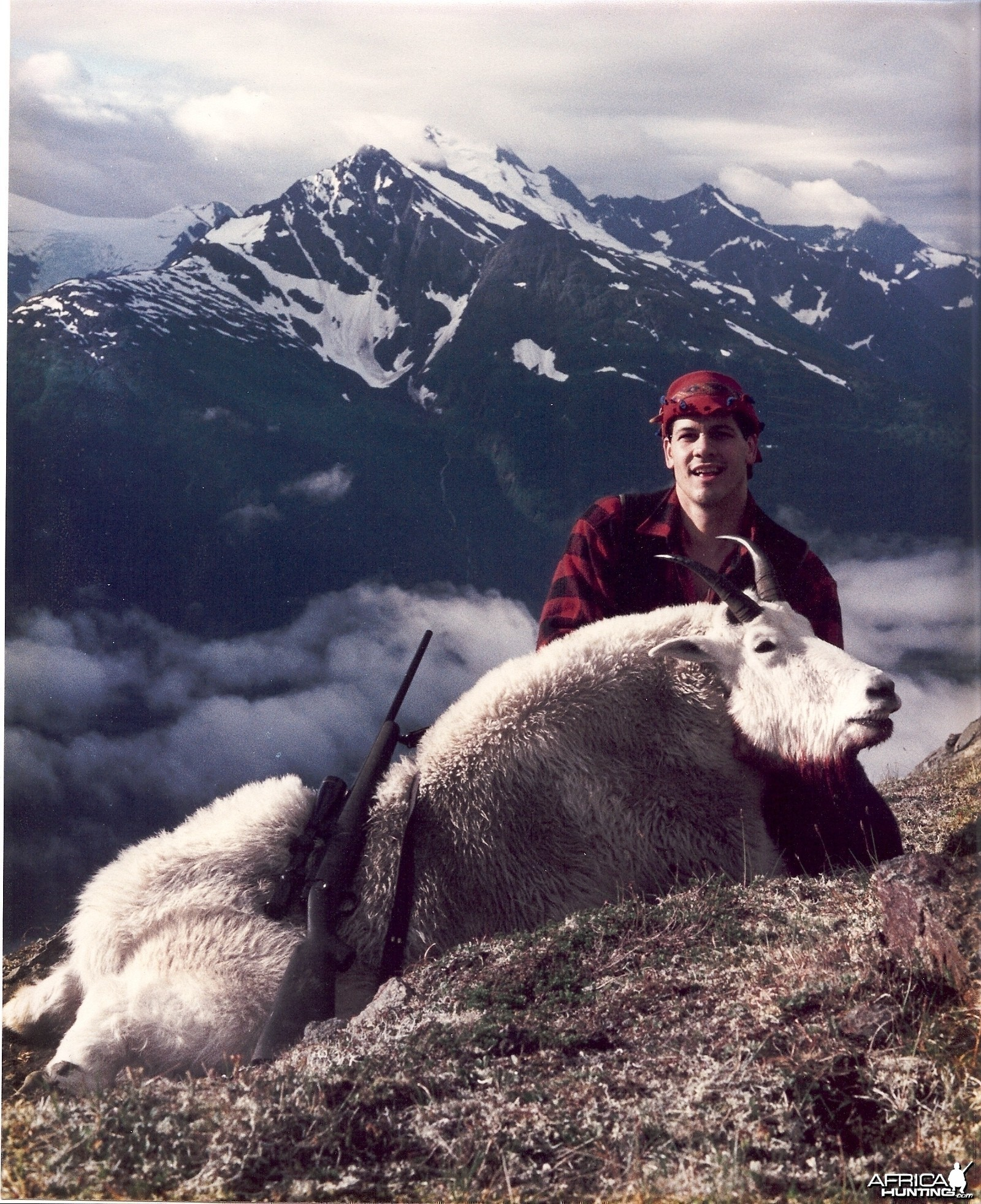 Trophy Mountain Goat Taku River Alaska