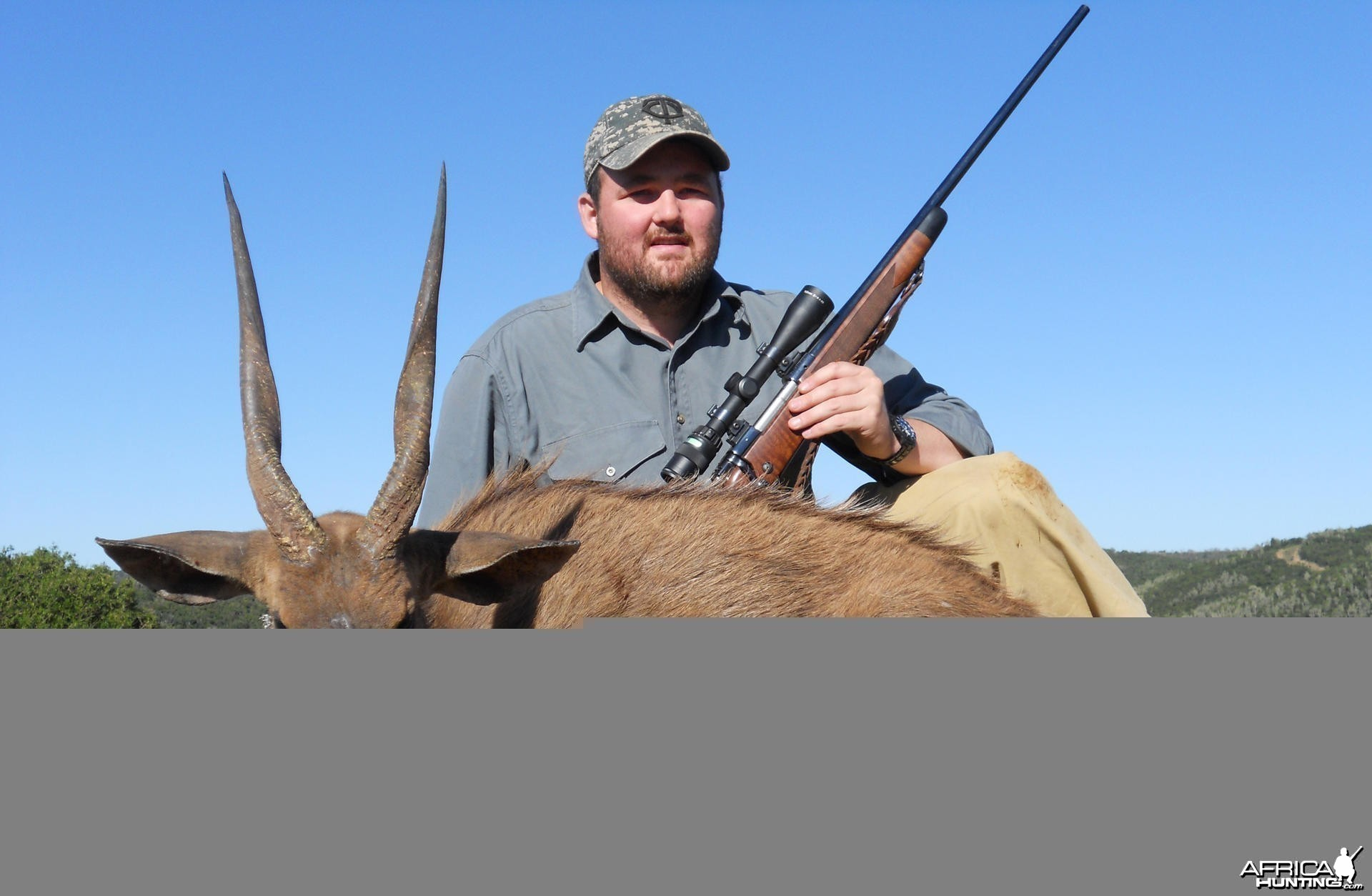 Cape Bushbuck hunt in South Africa