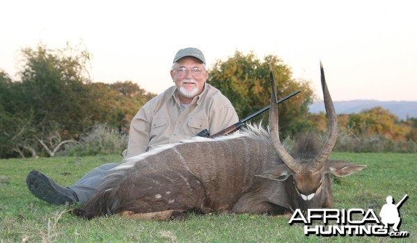 Nyala hunt in South Africa