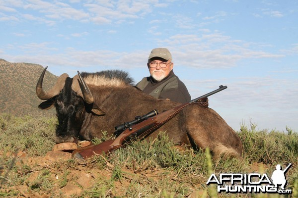 Black Wildebeest hunt in South Africa