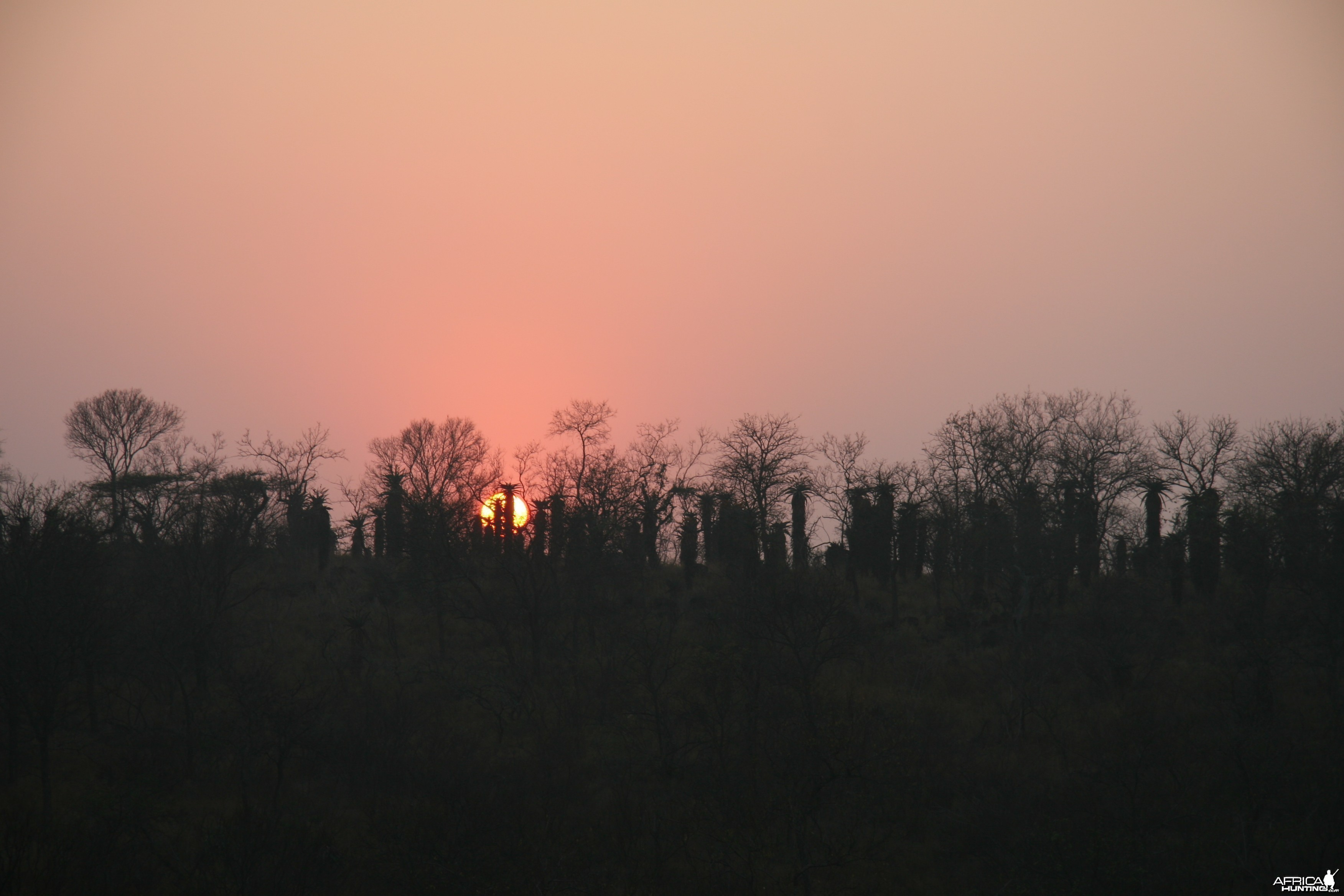 Mvubu Sunrise