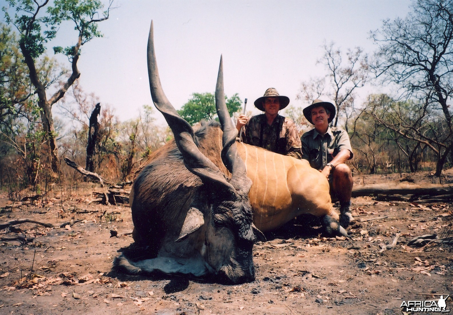 Hunting Lord Derby Eland in CAR with Rudy Lubin Safaris