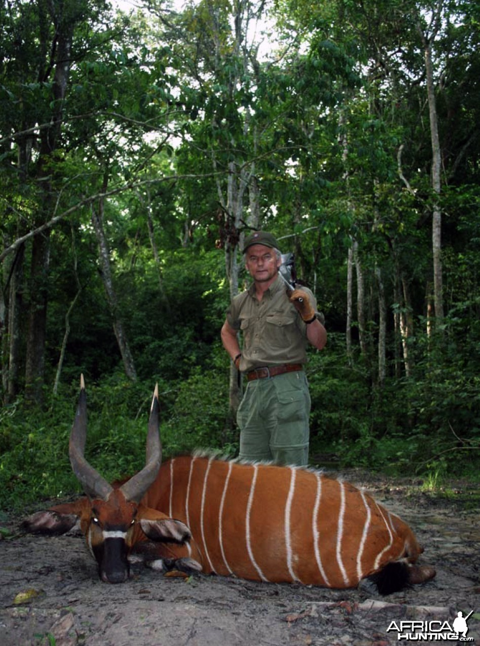 Hunting Bongo in CAR Rudy Lubin Safaris