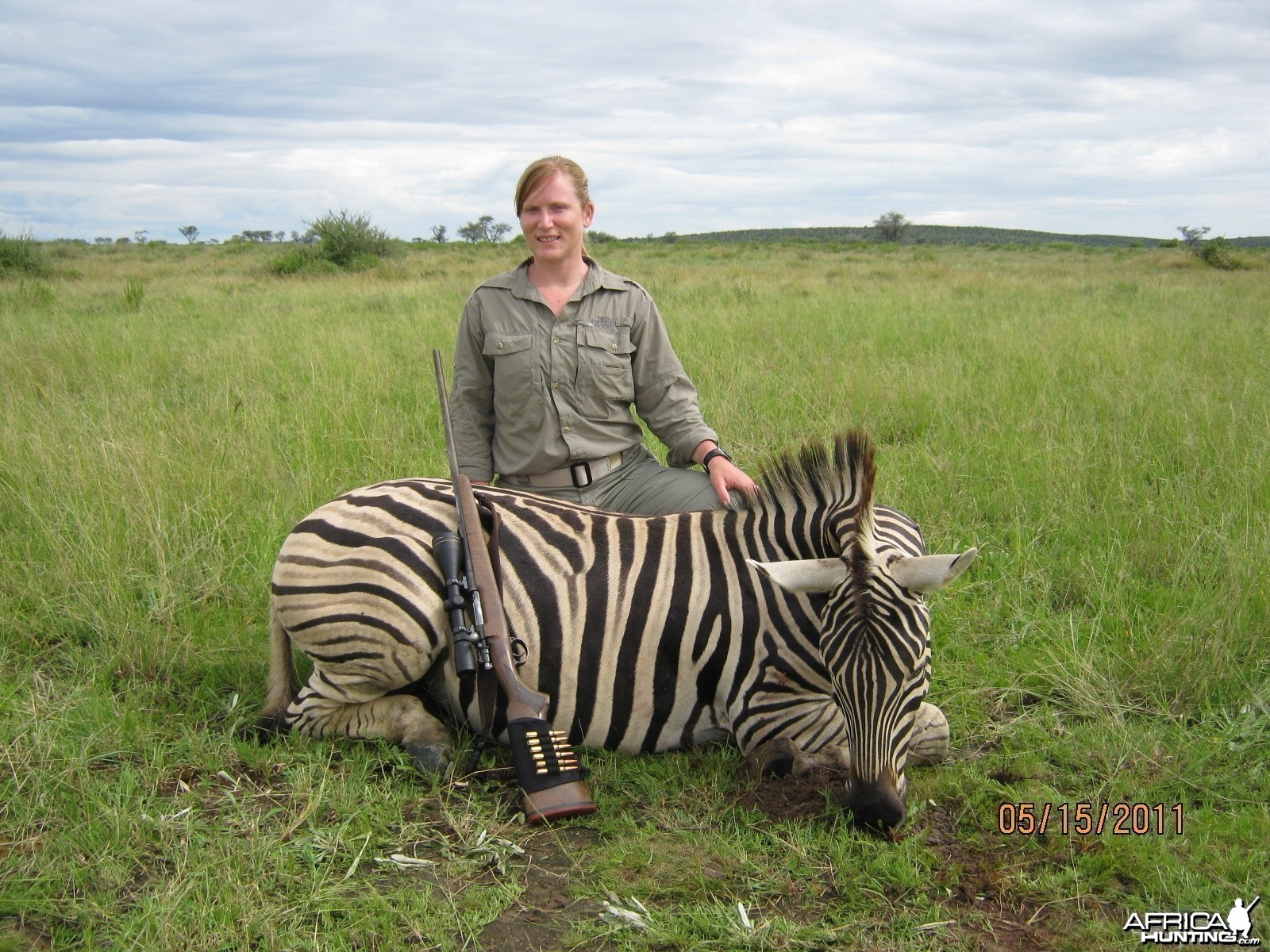 Burchell  Zebra with Kowas Hunting Safaris