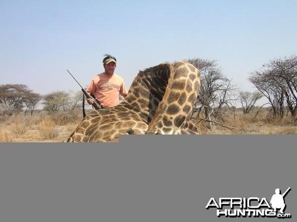 Giraffe Hunting in Namibia