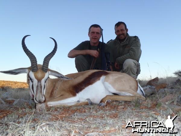 Kalahari springbuck