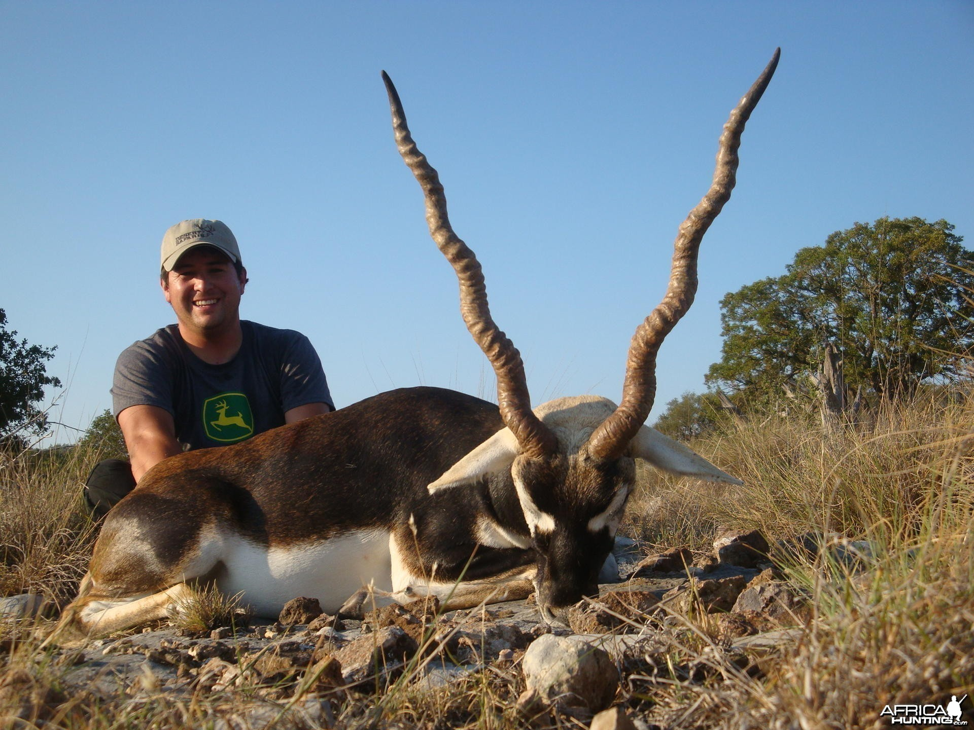 Hunting Blackbuck