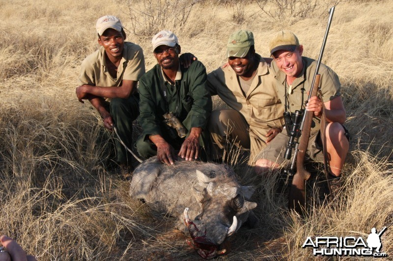 Warthog hunted in Namibia